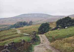 Little_Whernside